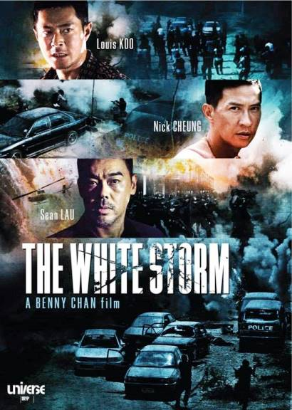Белый шторм / The White Storm (2013) BDRip-AVC